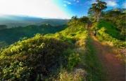 Dawn on Kuilau trail on Kauai Hawaii. More with keyword Series001